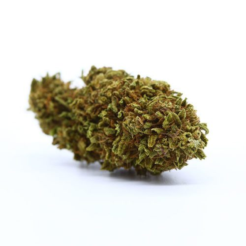 cbd-nutrition-cbd-aromabluete-gushers-4