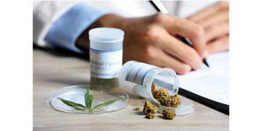 cbd-nutrition-cbd-blogs-medizinisches-cannabis-so-wird-es-verschrieben