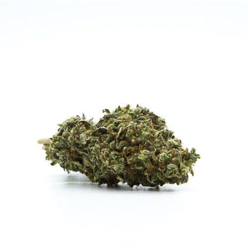 cbd-nutrition-cbd-aromablueten-premium-cbd-aromabluete-runtz-02