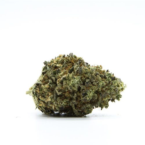 cbd-nutrition-cbd-aromablueten-premium-cbd-aromabluete-runtz