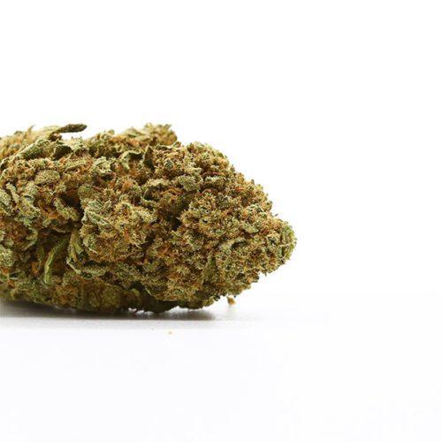 cbd-nutrition-cbd-aromabluete-white-widow-1