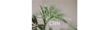 cbd-nutrition-cbd-blogs-was-ist-cannabinol