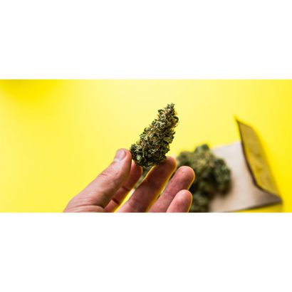 cbd-nutrition-cbd-blogs-was-sind-cannabis-trichome-2