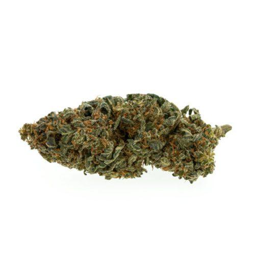 cbd-nutrition-aromablueten-pollinate-premium-cbd-aromabluete-mango-kush