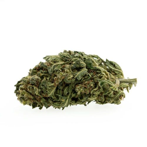 cbd-nutrition-cbd-aromablueten-pollinate-premium-cbd-aromabluete-mango-kush