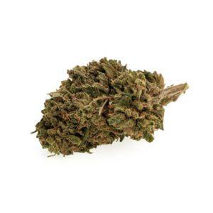 cbd-nutrition-cbd-aromablueten-pollinate-premium-cbd-aromabluete-new-york-cookies