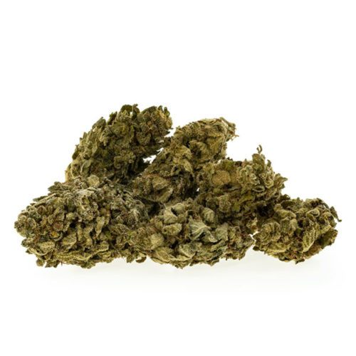 cbd-nutrition-cbd-aromablueten-premium-cbd-aromabluete-lemon-og